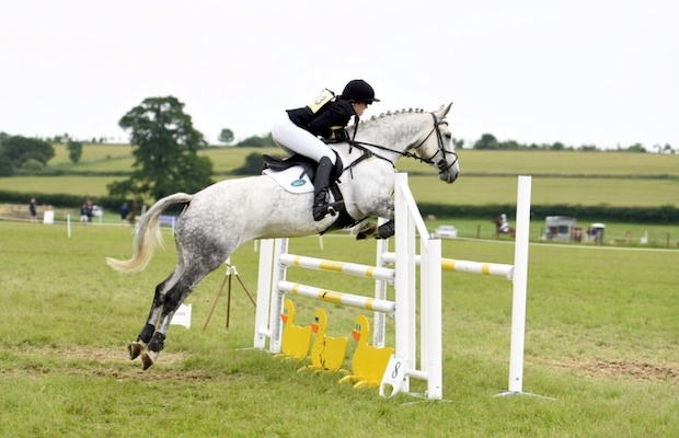 Perfect Allrounder / RC / PC / Grassroots Eventer