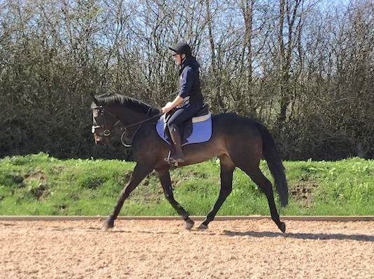 Smart Trainable ROR / Eventing Prospect