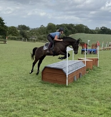 Quirky Thoroughbred / Team chaser - Right Horse Right Home