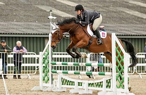 Heartbreaker x Contender 4yo jumping BSJA BN