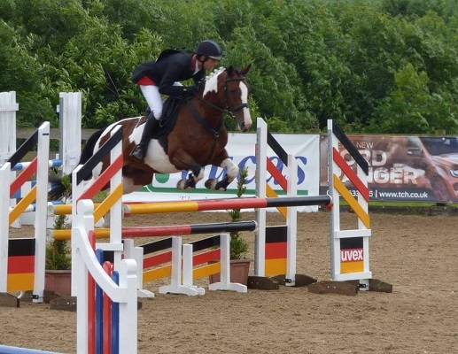 Experienced Competition Horse