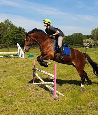 Lovely Welsh D Allrounder With a Super Jump