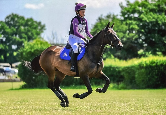 Ex Competition Mare Seeks Fun Hacking Home